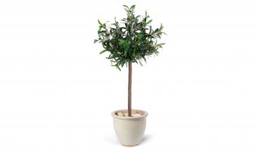 Plante artificielle -...