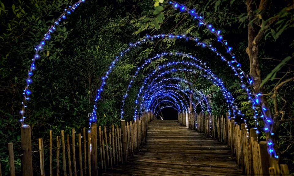 Lampe solaire 100 LED bleues