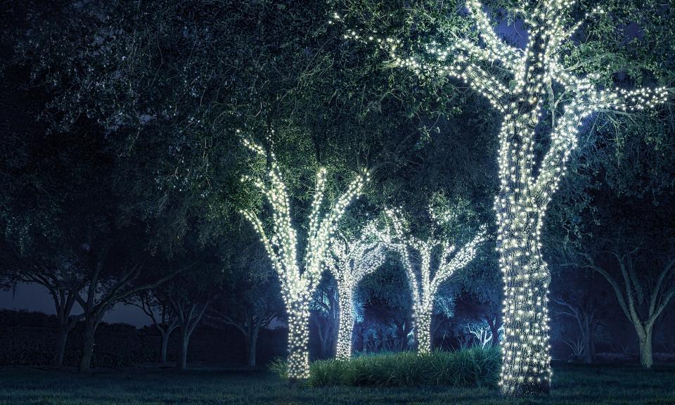 Guirlande solaire jardin LED - blanc