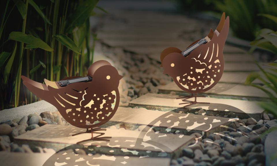 Oiseau solaire x2